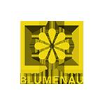 Blumenau logo